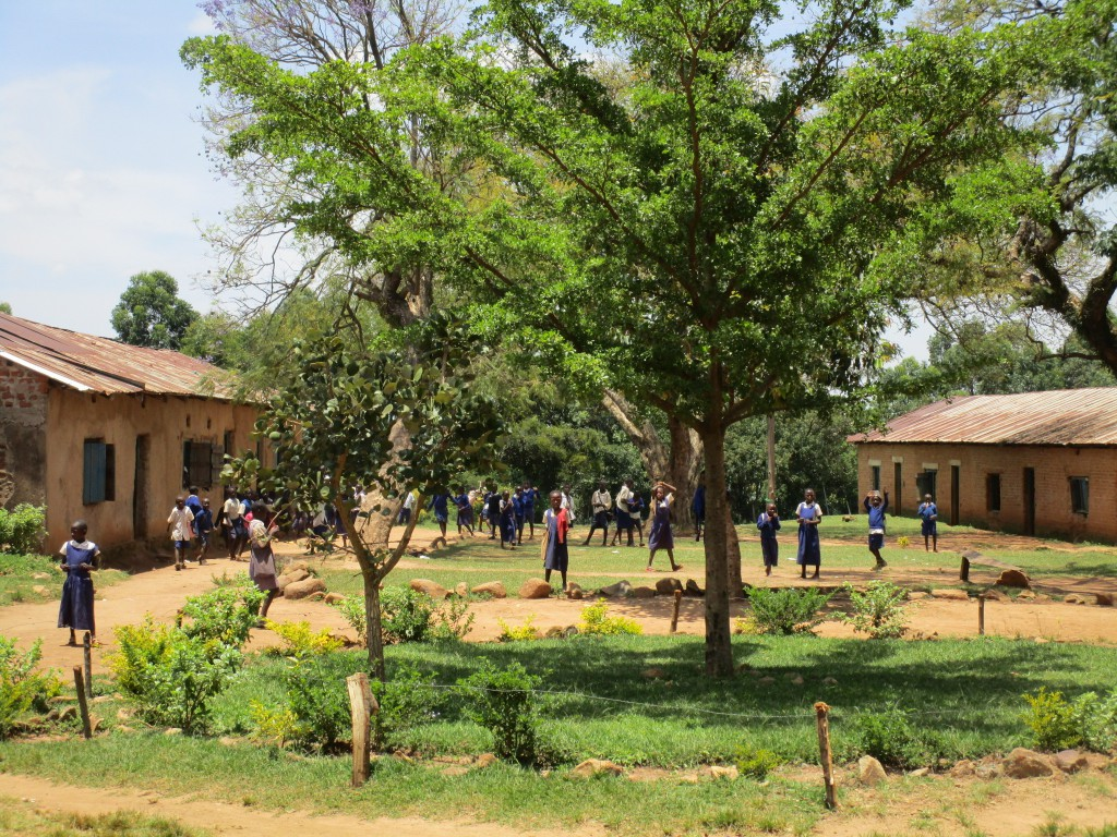 Misikhu Primary School